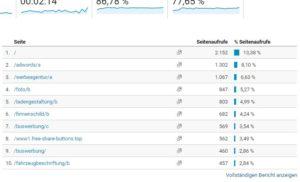 Screenshot: Welche Seiten werden wie oft angezeigt?